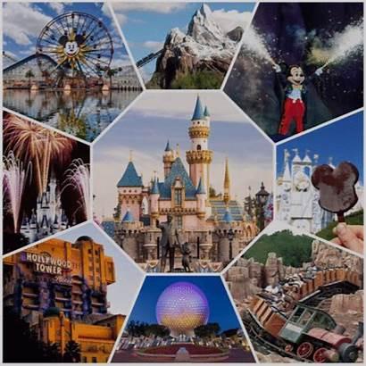 Ride Disney Disneyland Poll Favorite Park Attractions
