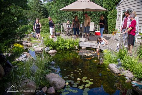 Aquascape Chicago by Water And Garden Showcase Pond Construction Pond