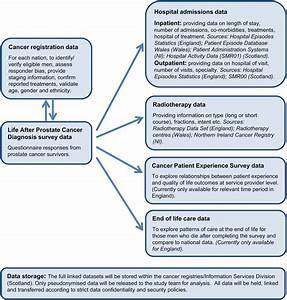 Life After Prostate Cancer Diagnosis  Protocol For A Uk
