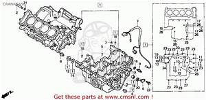 1996 Honda Cbr 600 Rr Wiring Diagram 1996 Yamaha Wiring Diagram Wiring Diagram