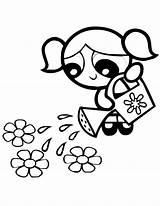 Powerpuff Coloring Buttercup Bubbles Flowers Printable Cartoon Waters Watering Drawing Puff Line Clipart Clip Hillbilly Power Cliparts Colouring Cartoonbucket Disney sketch template