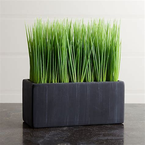 large potted grass reviews crate  barrel