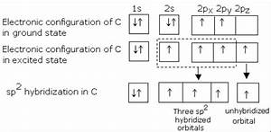 Explain Hybridisation In Ethene And Diagram Of Formatiom