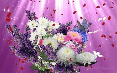 Flori Cu Gifs Imagini Fluturi Poze Trandafir