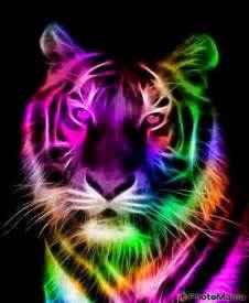 Cool Tiger Neon Rainbow Backgrounds