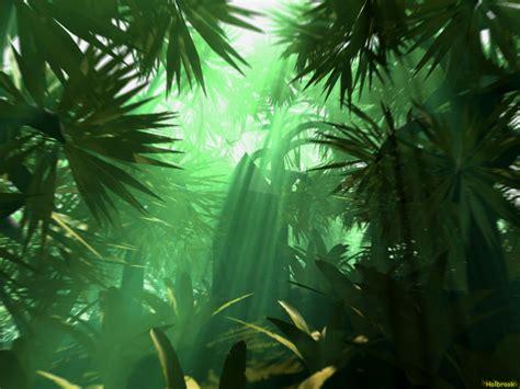 background jungle background kindle pics