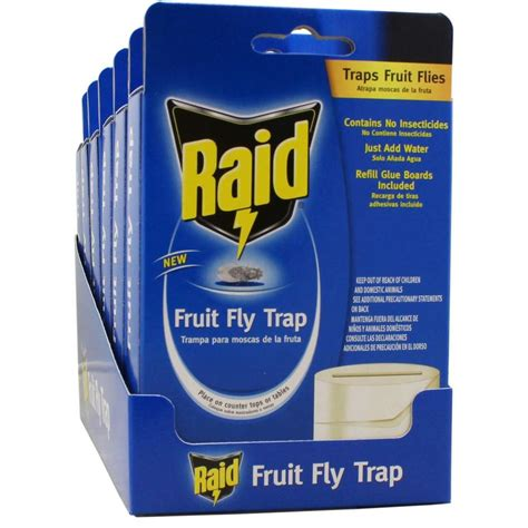 raid fruit fly trap  pack fft raid   home depot