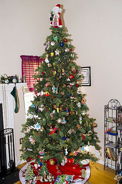 is bill doyle s christmas tree real or fake