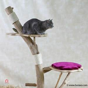 Arbre En Bois Deco : fabriquer un arbre chat 6 id es faciles et pas ch res ~ Premium-room.com Idées de Décoration