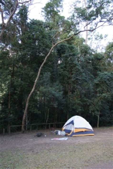 imbil state forest camping information department