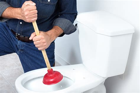 Clogged Plumbing by How To Fix A Clogged Toilet Without Calling A Plumber