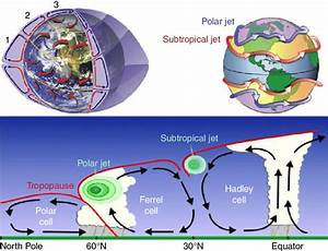 3 1 Global Wind Circulation Patterns  1  Hadley Cell  2
