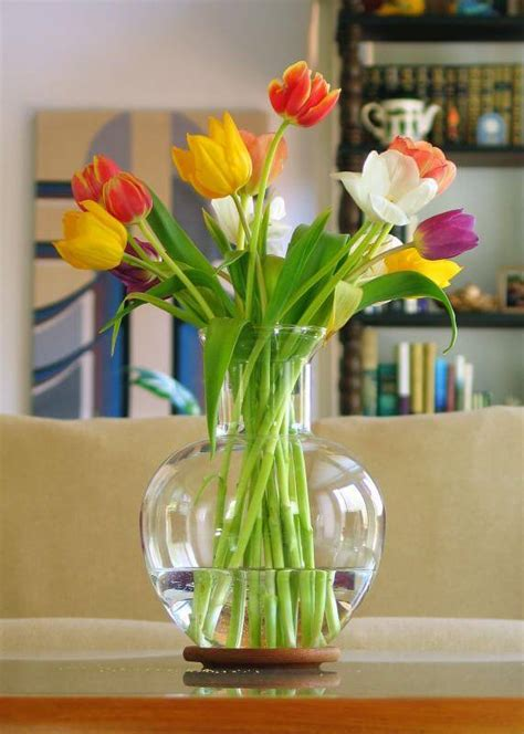 How To Preserve Flowers In A Vase by 7 Smart Ways To Use Vinegar In Your Apartment Apartment