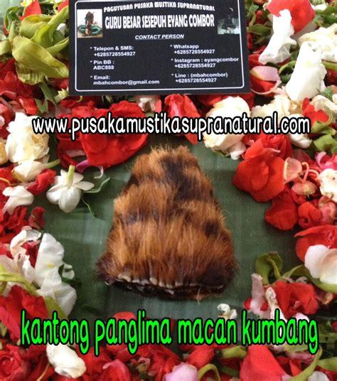 See more of panglima kumbang on facebook. KANTONG PANGLIMA MACAN KUMBANG | Paranormal Sakti Indonesia