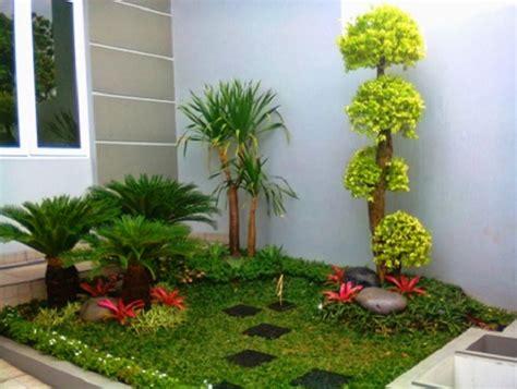 tanaman taman rumah minimalis