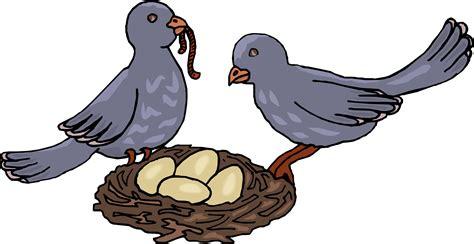 Cartoon Birds With Nest Bird