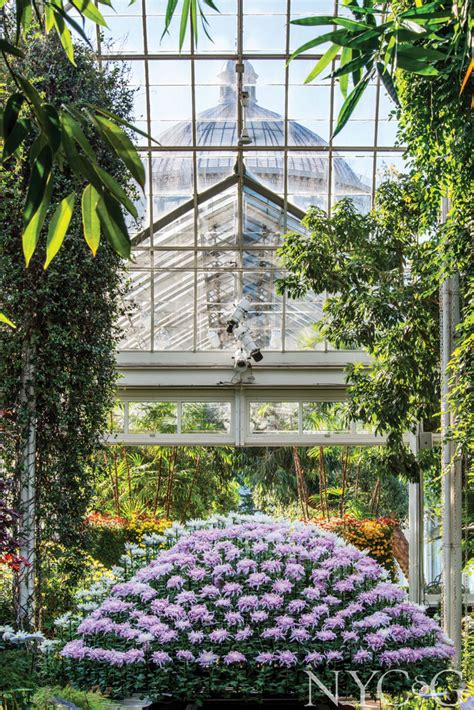 Botanischer Garten New York by The New York Botanical Garden Celebrates Its 125th