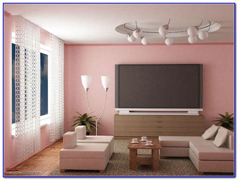 Best Living Room Wall Color Combinations Download Page