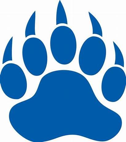 Paw Bear Pride Claw Logos Bruins Gold