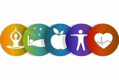 Wellness Clipart Wheel Health Healthy Benefits Clip
