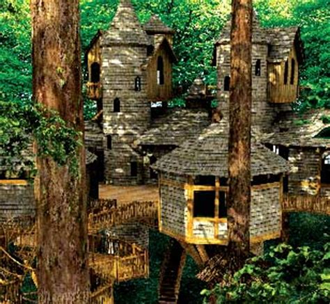 Treehouse Trove — Keeley Kraft