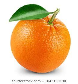 Orange Leaf Images Stock Photos Vectors Shutterstock