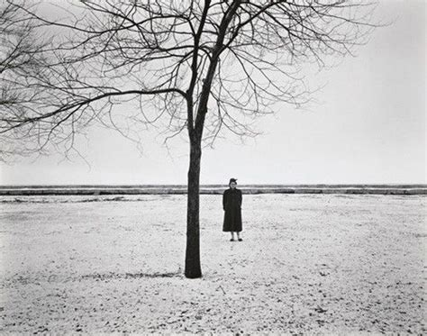 harry callahan harry callahan  photographer  work