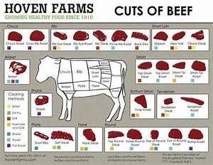 Cuts Of Beef Chart 18 U0026quot X28 U0026quot   45cm  70cm  Poster