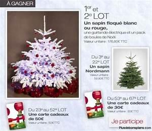 Sapin De Noel Truffaut : sapin de no l 2013 gratuit truffaut 22 exemplaires 45 cadeaux ~ Farleysfitness.com Idées de Décoration