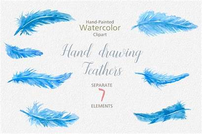 Feather Feathers Clipart Watercolor Painted Watercolour Hand