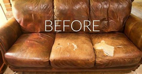 hide  couchs wear  tear    ingenious