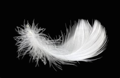 ma doudoune perd ses plumes est ce normal