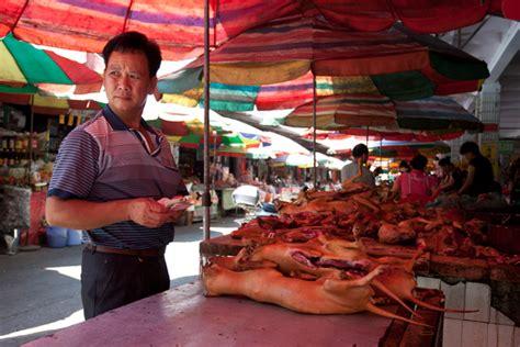 dog slaughter continues  chinas yulin  growing