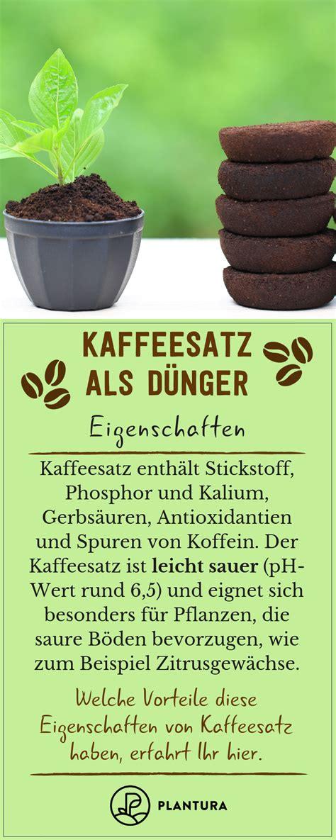kaffeesatz als dünger für orchideen kaffeesatz als d 252 nger verwendung vorteile des hausmittels plantura artikel kaffeesatz