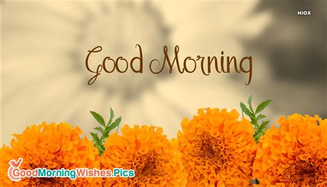 good morning yellow flowers images