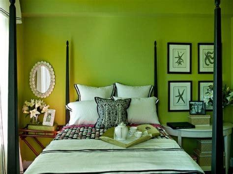 plante verte pour chambre a coucher les meilleures idées pour la couleur chambre à coucher
