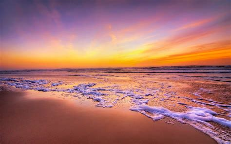 golden sunset california beach widescreen wallpaper