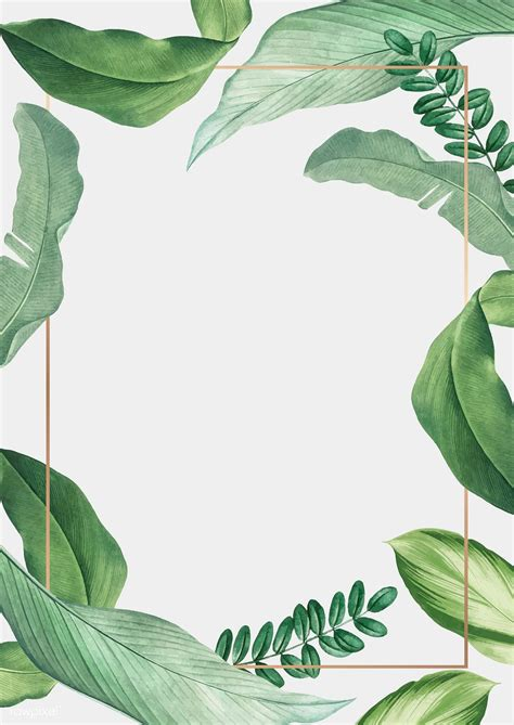 Download premium vector of Hand drawn tropical leaves ...