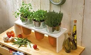 Küche Selbst Gebaut : kr uterregal k che gartenk che gartenbar ~ Lizthompson.info Haus und Dekorationen