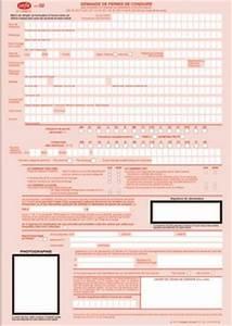 Déclaration De Perte Du Permis De Conduire : cerfa permis de conduire ~ Medecine-chirurgie-esthetiques.com Avis de Voitures