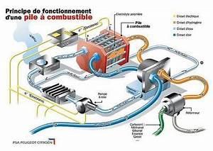 Pile à Combustible Voiture : pile combustible une mini usine lectrochimique l 39 argus ~ Medecine-chirurgie-esthetiques.com Avis de Voitures