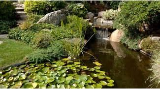 Water Garden Water Garden With Aquatic Plants Splendid Japanese Water Garden