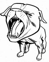 Pitbull Angry Coloring Barking Drawing Face Faces Getdrawings sketch template