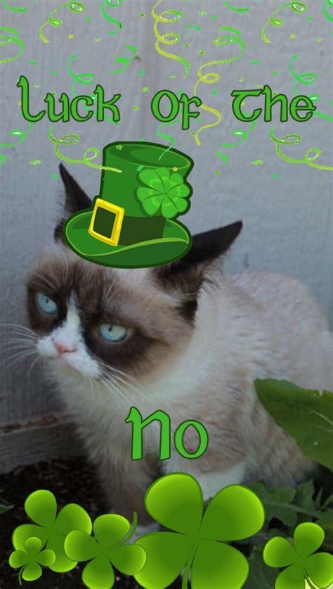 Happy St Patricks Day Meme - more st patrick s day memes 43 pics