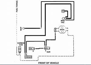 Vacuum Line Color Diagram  Mice Ate Through 5 Vacuum Lines