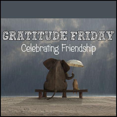gratitude friday celebrating friendship andrea reiser