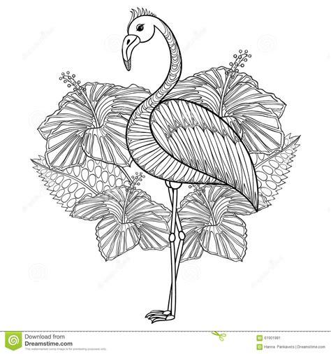 coloring page  flamingo  hibiskus stock vector