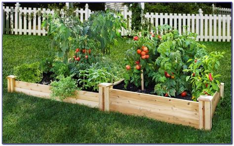 raised bed garden kits ace hardware  page home