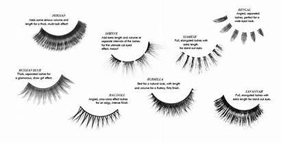 Eyelashes False Lashes Mata Bulu Makeup Sleek