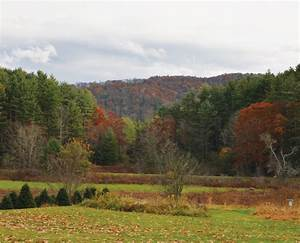 Laurel Springs/Little Grandfather Mountain | Protecting ...